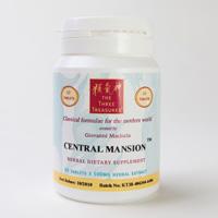 central_mansion