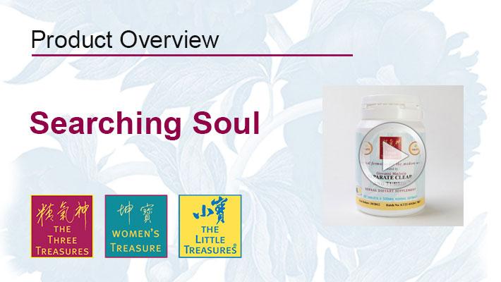 searching_soul_video