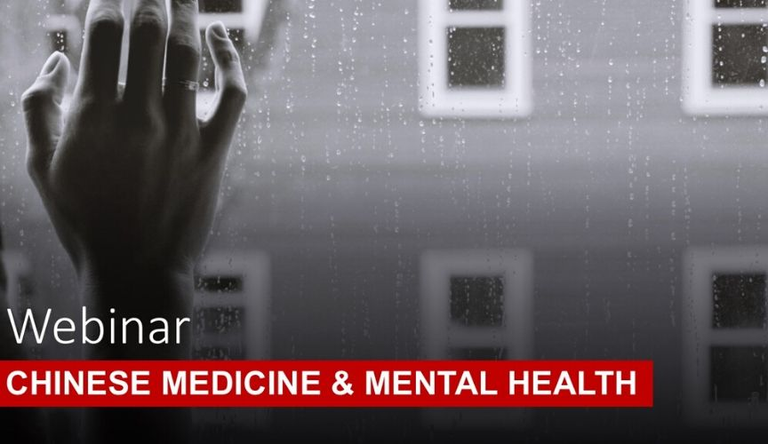 Chinese Medicine For Mental Health – Training Webinar with Anastacïa White