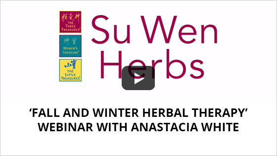 webinar_video_fall_and_winter_therapy